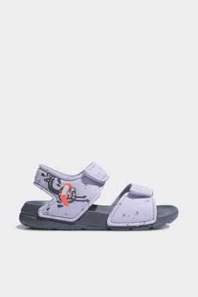 adidas ALTASWIM I Mor Kız Çocuk Sandalet 101117769