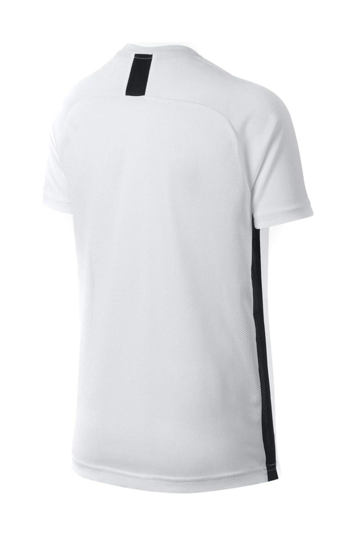 Nike Kids Beyaz Unisex Çocuk T-Shirt B Nk Dry Acdmy Top Ss 2