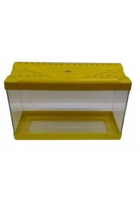 Up-Aqua Sarı Kapaklı Cam Akvaryum 50 cm