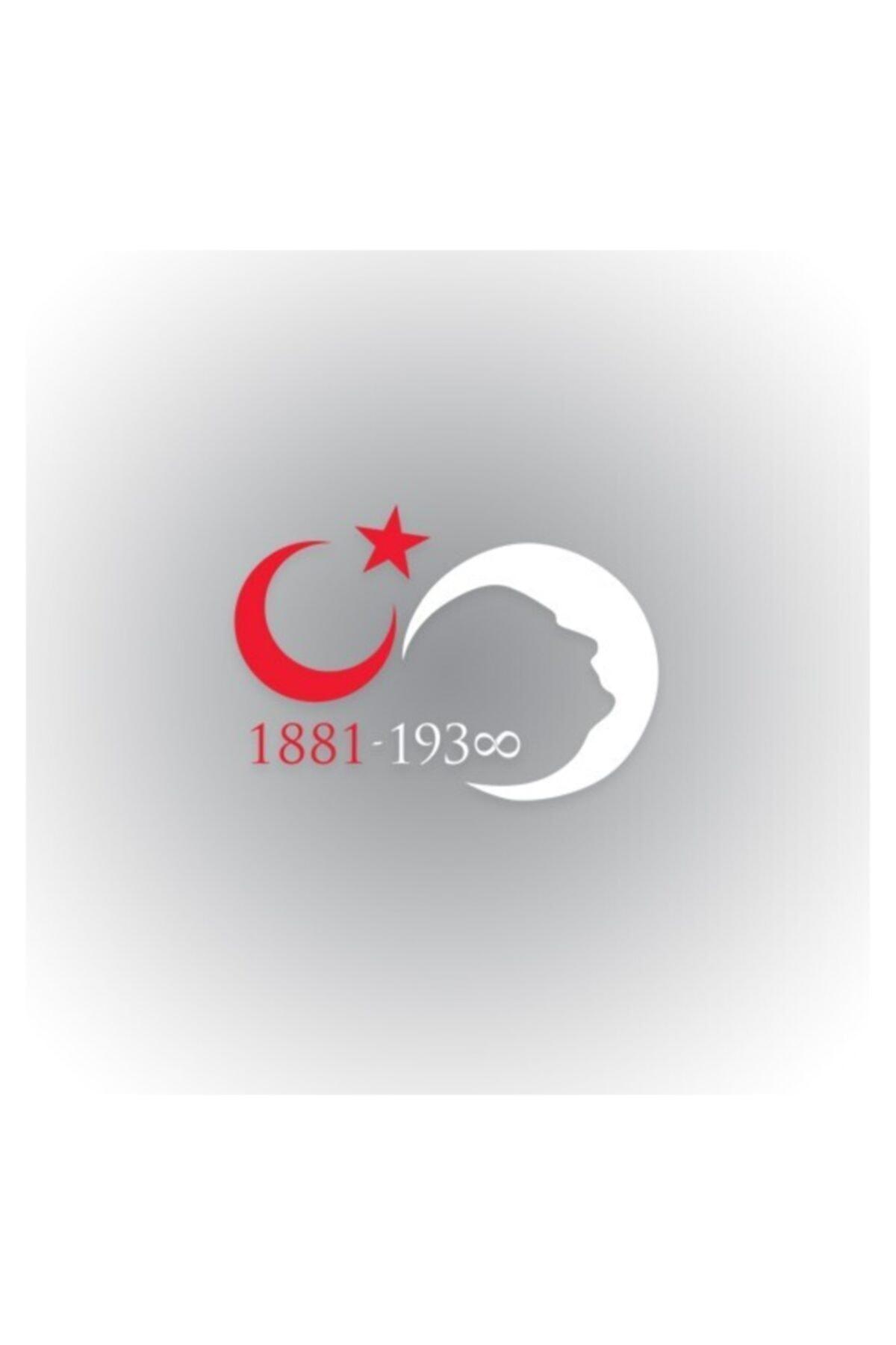 TSC Atatürk Sonsuz Ay Yıldız Silüet Oto Sticker 30 cm x 21 cm 1