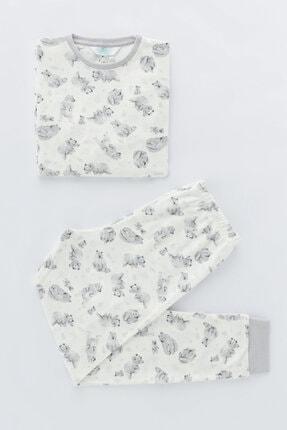 Penti Beyaz Erkek Çocuk Printed Bear Termal 2li Pijama Takımı