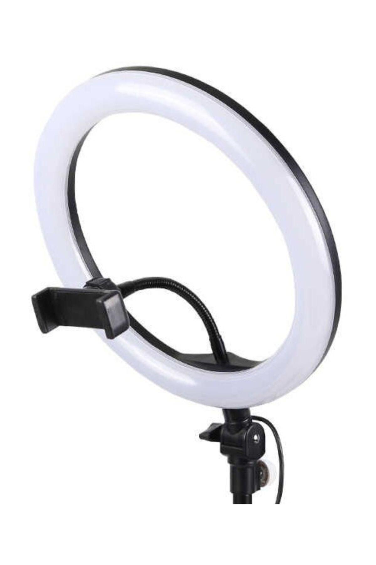 whitetech 10 Inç Youtuber Video Oda Çekimleri Için Ring Light Sürekli Beyaz Led Işık Halka Led Lamba 1