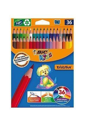 Bic Kuru Boya Kalemi 36'Lı Kutu
