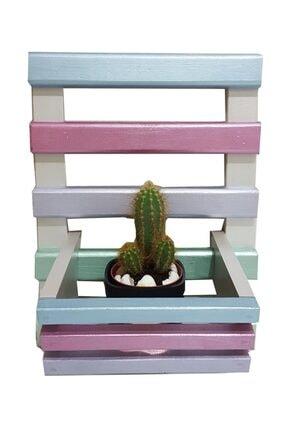 DEHAMODA Dekoratif Renkli Şık Çiçeklik / Saksılık Saksı Standı