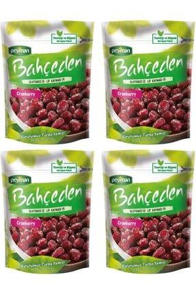 Peyman Bahçeden Cranberry Turna Yemişi 150 gr 4 Adet