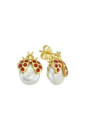 Luzdemia Ladybug Earr. 925