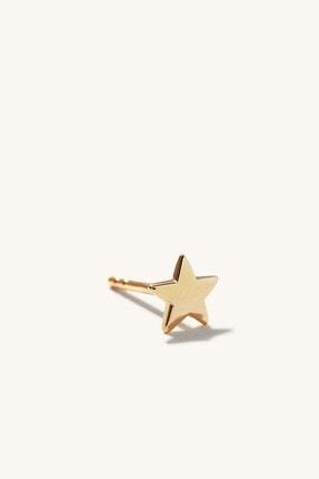 GençTaş Kuyumculuk 14 Ayar Altın Minimalist Yıldız Kadın Küpe