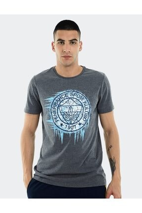 Fenerium Erkek Trıbun Frozen Logo T-shırt