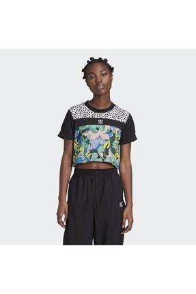 adidas Kadın Siyah Cropped T-shirt