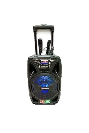 Platoon Pl-4429 Bluetooth Usb/sd/aux Karaoke Mic. Taşınabilir Hoparlör Speaker