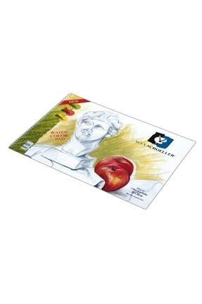 Alex Schoeller Resim Defteri 35x50 Cm. 120 gr. 15 Yp.