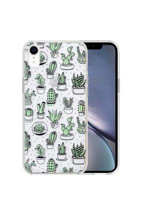 Apple Microsonic Iphone Xr Desenli Kılıf Kaktüs