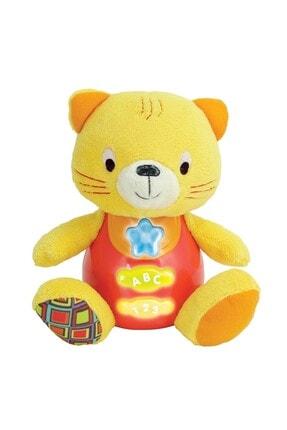 Pal Baby 3009 Oyuncak Eğitici Dostum Kedicik