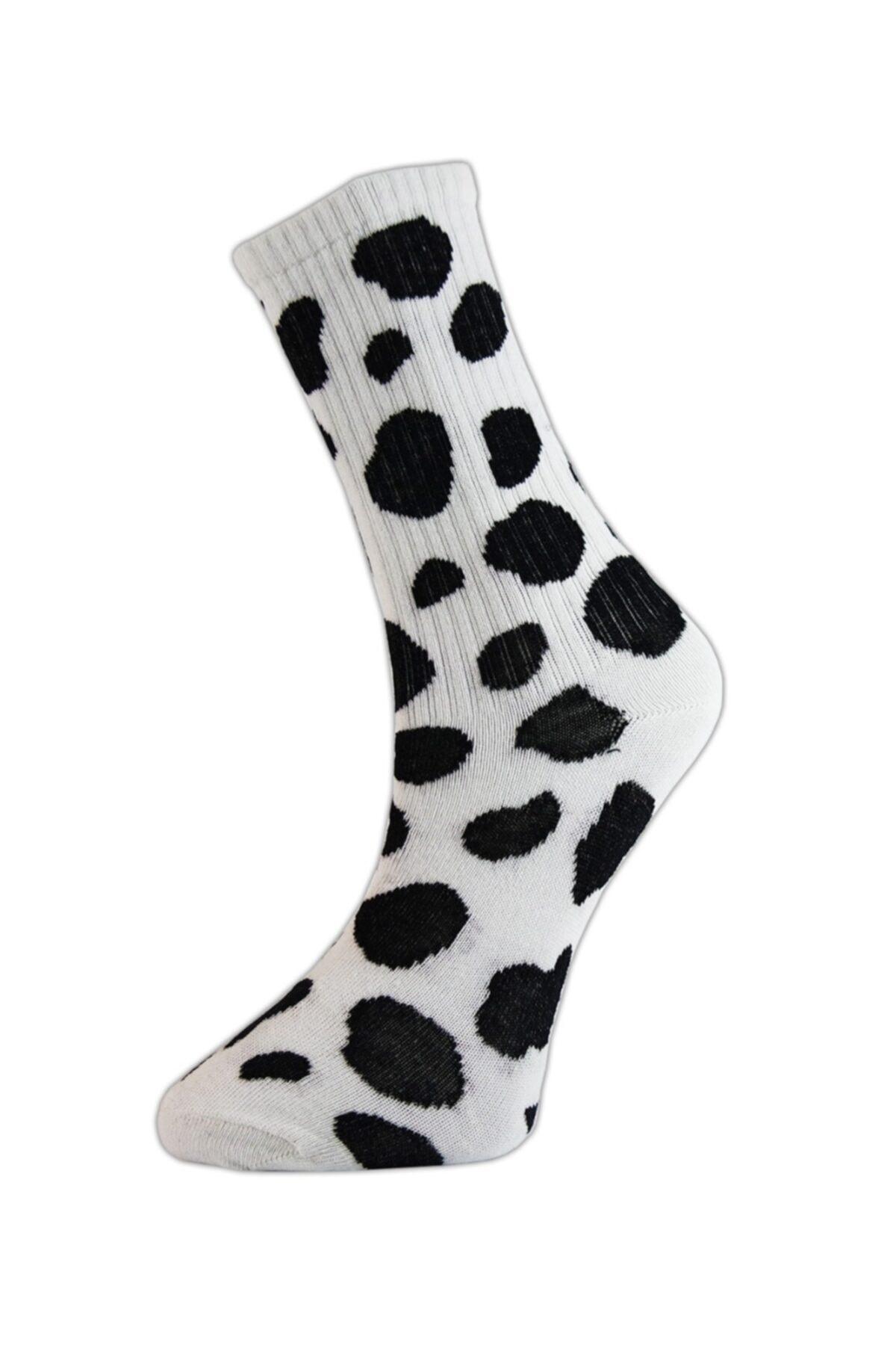 Cool Store Dalmaçyalı Kolej Çorap 1