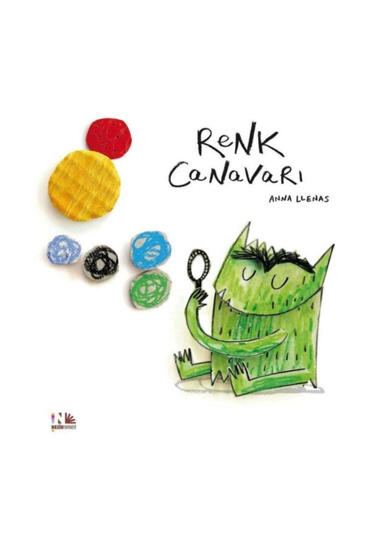 Nesin Yayınları Renk Canavarı - Anna Llenas 1