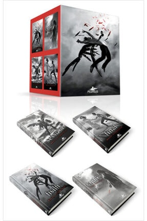 Pegasus Yayınları Hush Hush Serisi Kutulu Set (4 Kitap Ciltli)