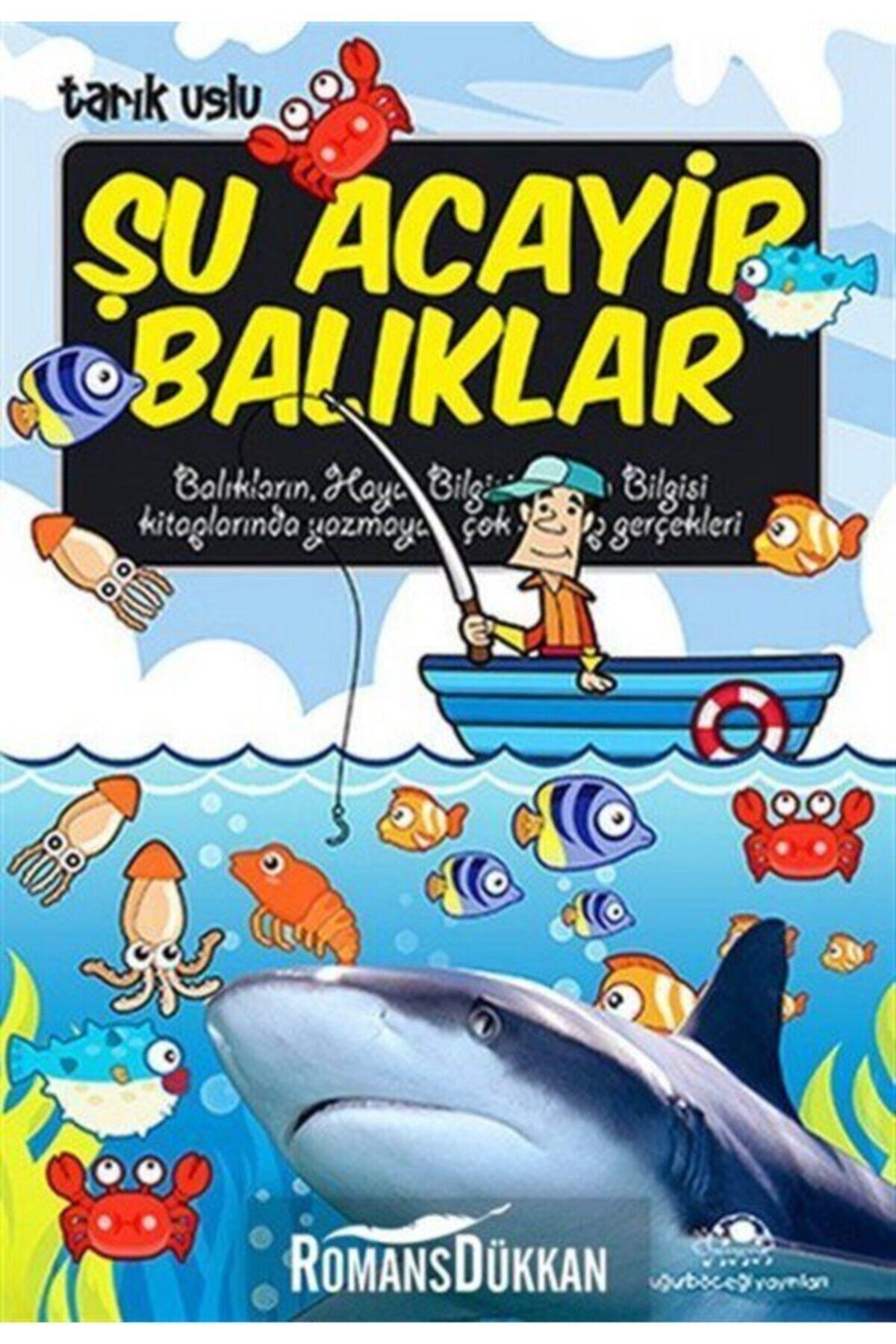 Uğurböceği Yayınları Şu Acayip Balıklar 1