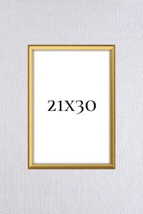 Araste Dekorasyon Gold Çerçeve (a4 )21x30