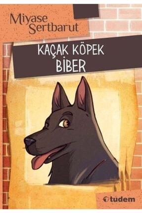 Can Yayınları Ayrılık Valsi-milan Kundera
