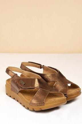 Pierre Cardin PC-1378 Bronz Kadın Sandalet