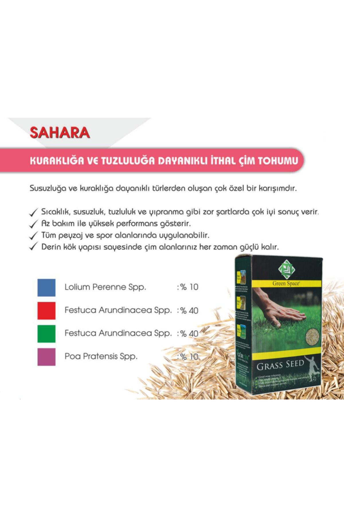 greenspace Ithal Green Space Çim Tohumu Kuraklığa Ve Sıcağa Dayanıklı Mix 1 Kg 2