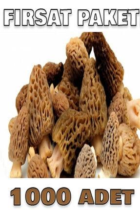 tohumcu kikizade +1000 adet kuzu göbeği mantarı tohumu 1000 adetlik süper fırsat paketi
