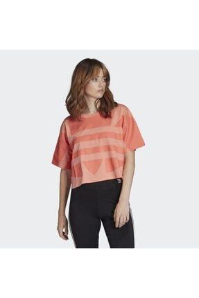 adidas Kadın Turuncu Logo Tişört