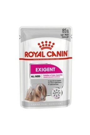 Royal Canin Ccn Mini Exigent Loaf Köpek Konserve Maması 12x85 Gr