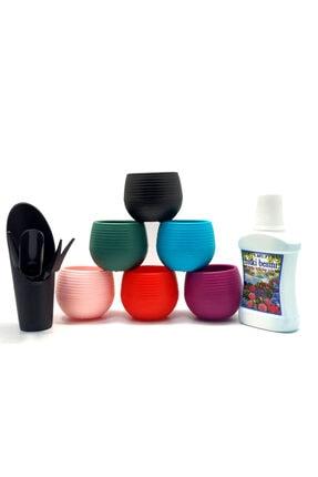 PR 6 Adet Mini Kaktüs Sukulent Saksısı - Kaktüs Dikim Seti - Çicek Ve Bitki Besini