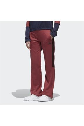 adidas Kadın Bordo New Authentic Wide Leg Eşofman Altı