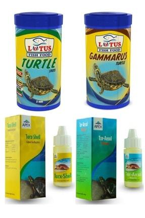 ARMATÜRK Kaplumbağa Seti, 100 Ml Lotus Turtle, 100 Ml Lotus Gammarus, Vitamin, Kabuk Sertleştirici