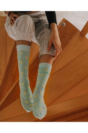 ADEL ÇORAP Turkuaz Muz Desenli Çorap