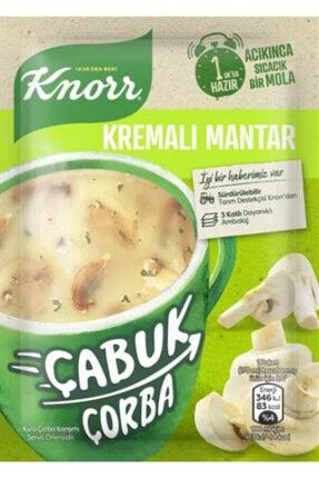 Knorr Çabuk Çorba Kremalı Mantar 22 Gr X 24 Adet