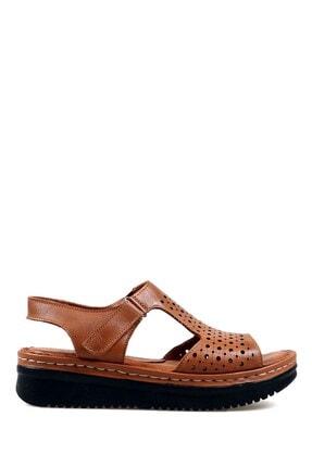 Hammer Jack Taba 12 Kadın Terlik / Sandalet 164 505-z