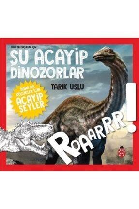 Uğurböceği Yayınları Daha Da Küçükler Için - Şu Acayip Dinozorlar