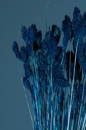 YAPAY ÇİÇEKÇİNİZ Doğal Kurutulmuş Mavi Renk Kuş Otu