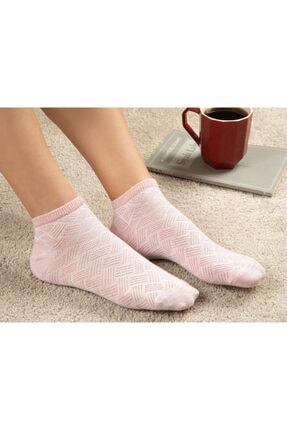 English Home Silvery Pamuk Kadın Çorap Pembe