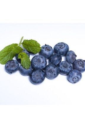 ORGANİKORMAN Yaban Mersini (blueberry) Dondurulmuş Yerli Üretim 1 Kg