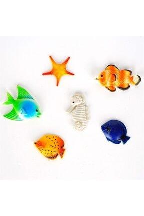 bimbambom Buzdolabı Magnet 6 Parça, Balık Seti Magnet