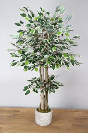 Yapay Çiçek Deposu Yapay Starlight Benjamin Ağacı 105 Cm Beton Saksılı Yeşil-beyaz