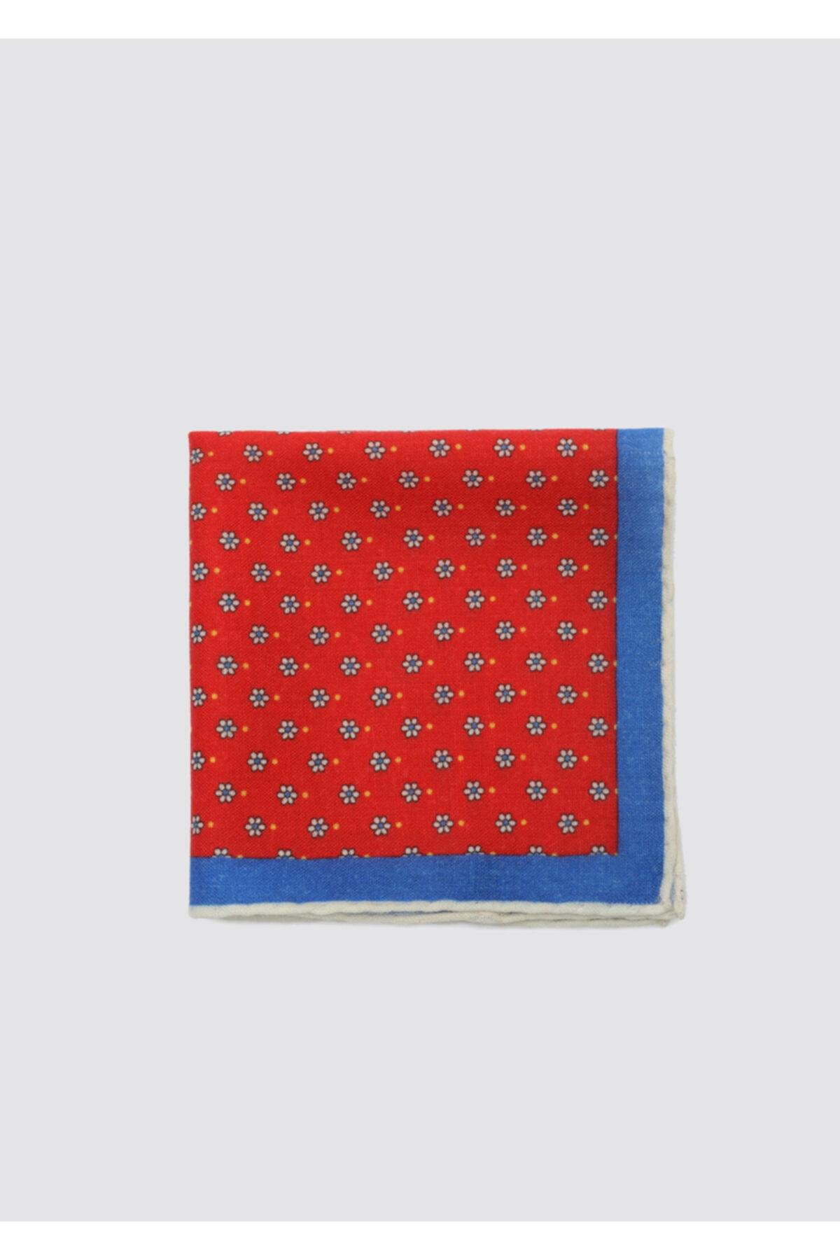 D'S Damat Erkek Kırmızı Mavi Desenli Mendil 2