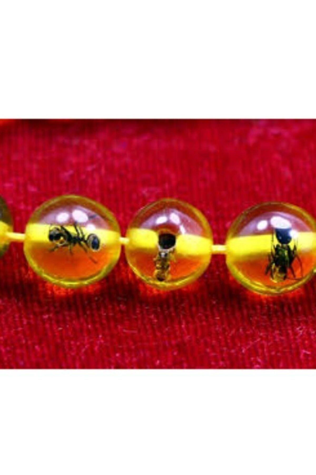 Kehribaryurdu Karınca Fosilli Toz Kehribar Tesbih 2