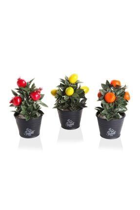 İzmir Cam Pazarlama Ticaret Takım Mini Meyve Ağacı Seti 3'lü