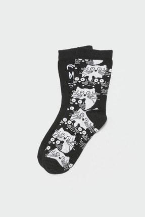 LC Waikiki Kadın Siyah LCW DREAM Soket Çorap