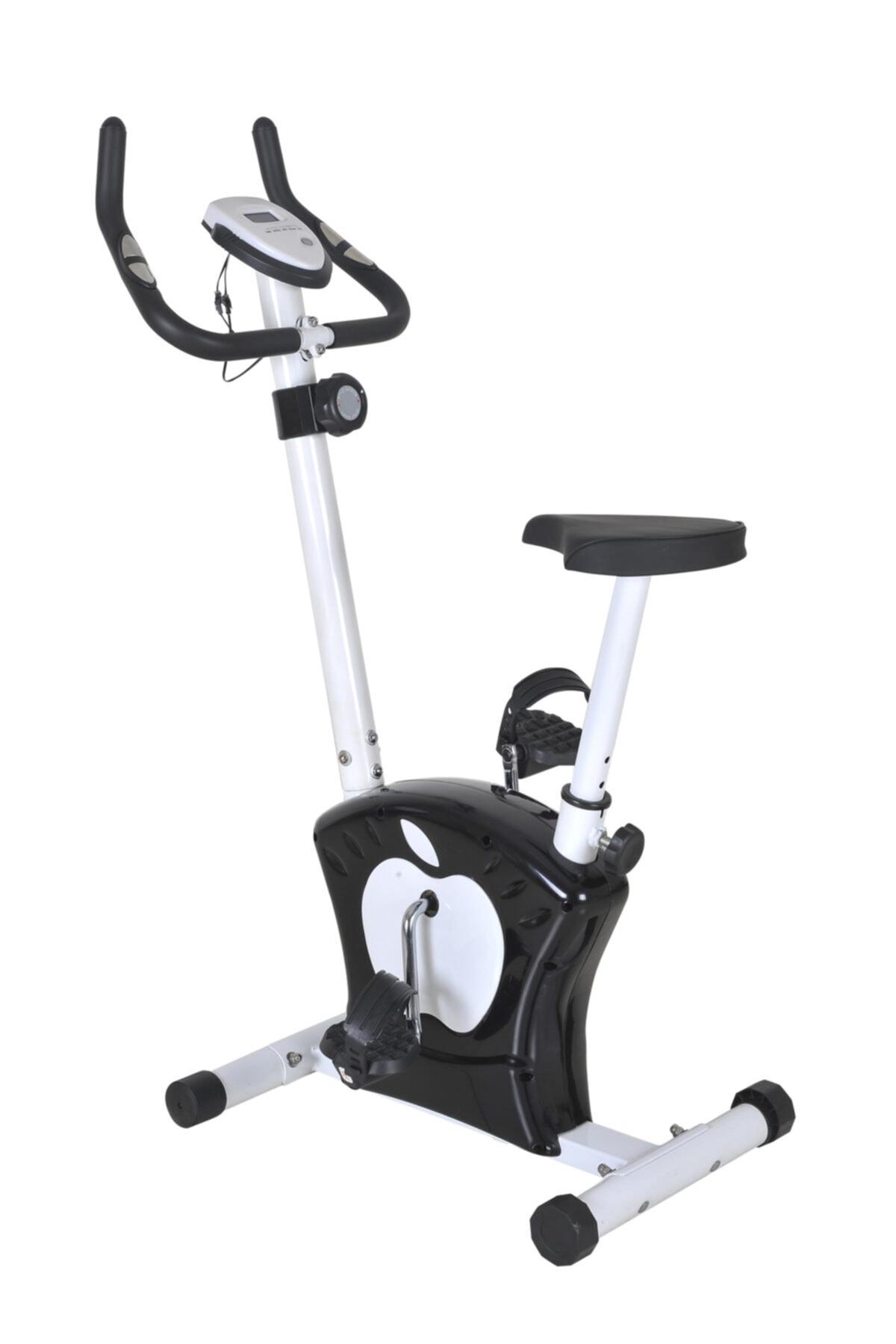 Dynamic Dikey Bisiklet 1