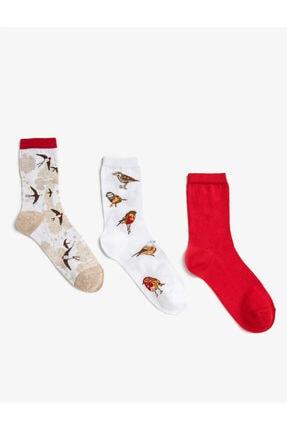 Koton Kadın Desenli Pamuklu Çorap Seti 3'lü