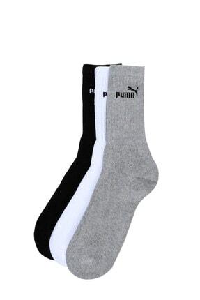 Puma Sport Chestnut 3 Renk Spor Çorap 883296-10