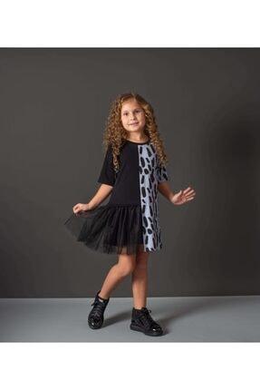Hupo Kız Çocuk Mavi Tül Ve Zebra Desenli Elbise