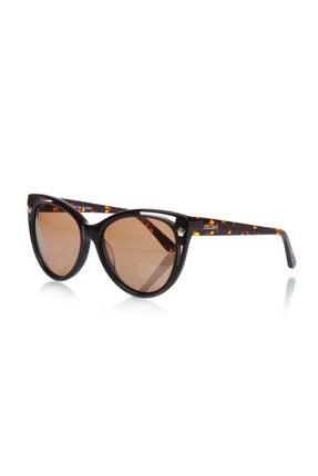Rachel Kadın Kahverengi Cat Eye Güneş Gözlüğü RH 14003 04
