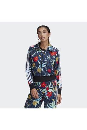 adidas Orginals Icon Kadın Ceket Gn3533